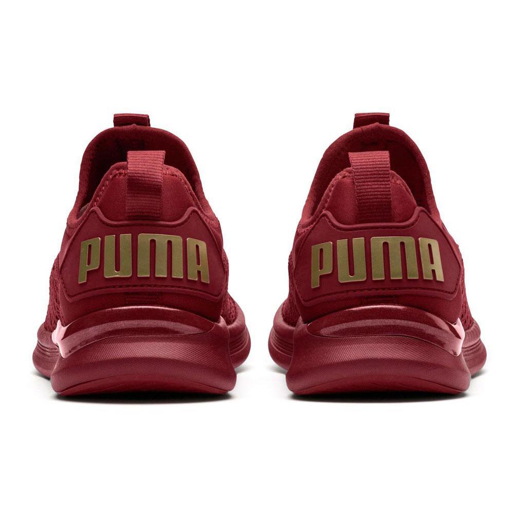 reputable site f4490 77a0e Puma Ignite Flash Varsity